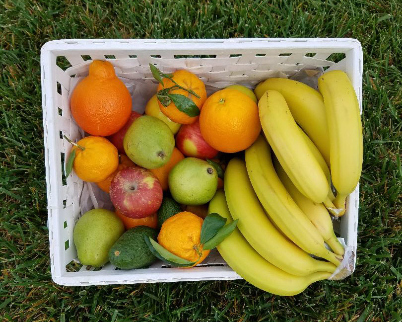 Poco Fruit Basket